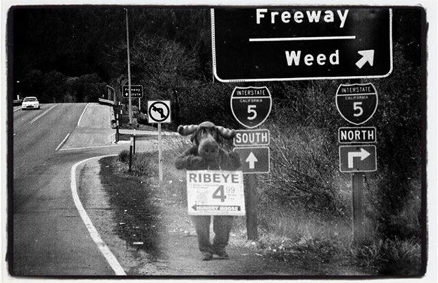 #throwbackthursday Roadtripping the North West in 2004, with @minus_ramps_pools @yogisk8 @berntjahnel #roadtrip #travel #I5 #northwest #freeway #weed #ripeye #4.99 #analogphotography #filmphotography #ilford #hp5 #eos1n #bailgun #magazine #gerdriegerphotography