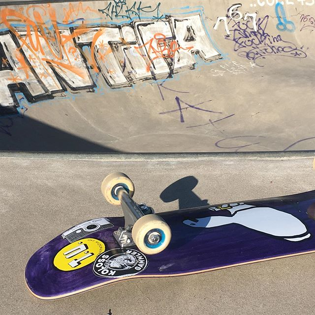 Landau Kidney Pool Session today. Love the new TU Drinky Bird board. #skateboarding #pool #bowl #concrete #bailgun #magazine