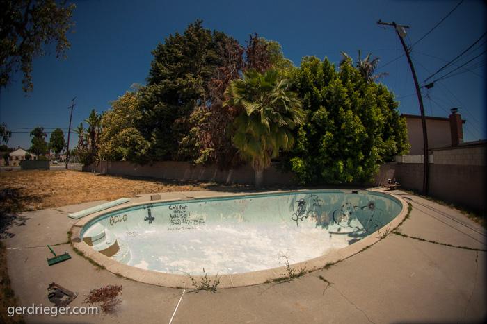 2014-06-22_Downey-Egg-9883